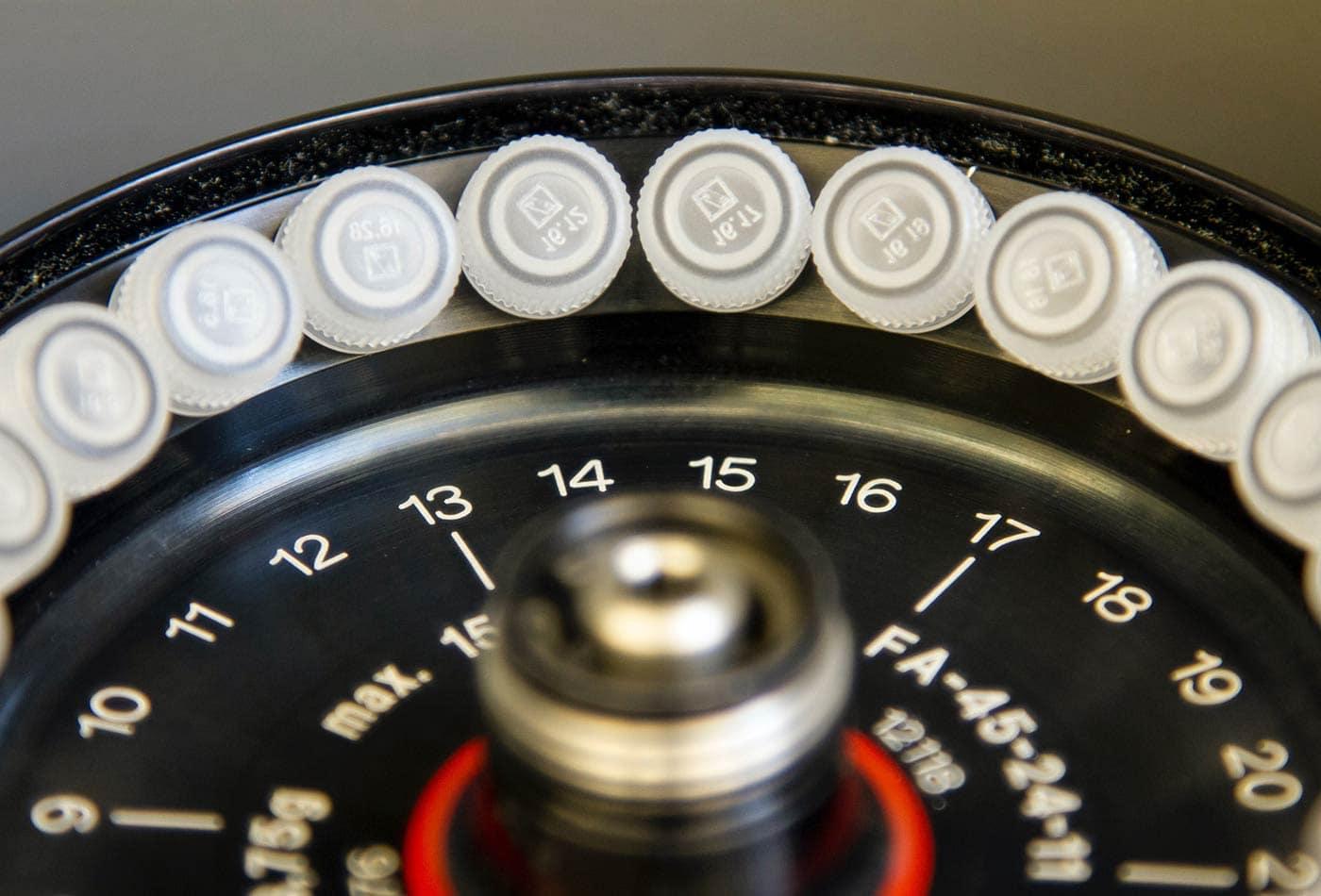 analog gauge color